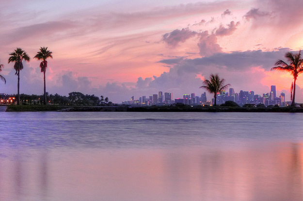 19 Reasons Not To Visit The Miami Area