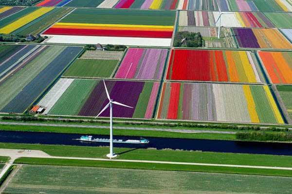 11.) Tulip fields (Netherlands)